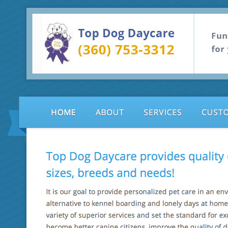 Top Dog Daycare