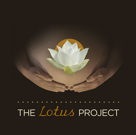 The Lotus Project logo